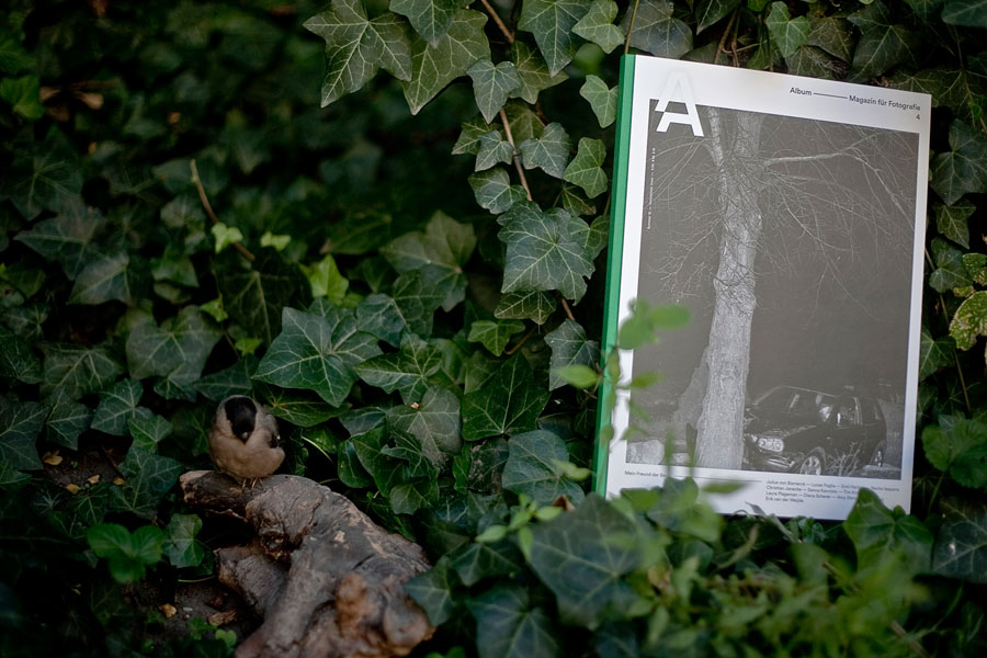 Album, Magazine For Photography #4 »Mein Freund Der Baum«