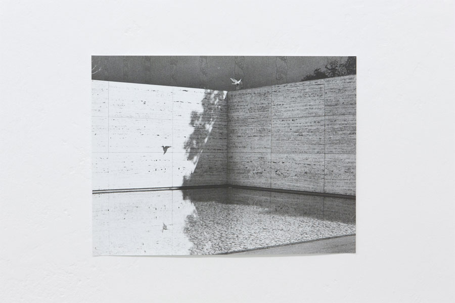 Works: © Jochen Lempert, Installation View At Between Bridges: Untitled (Barcelona-Pavillion), 2007