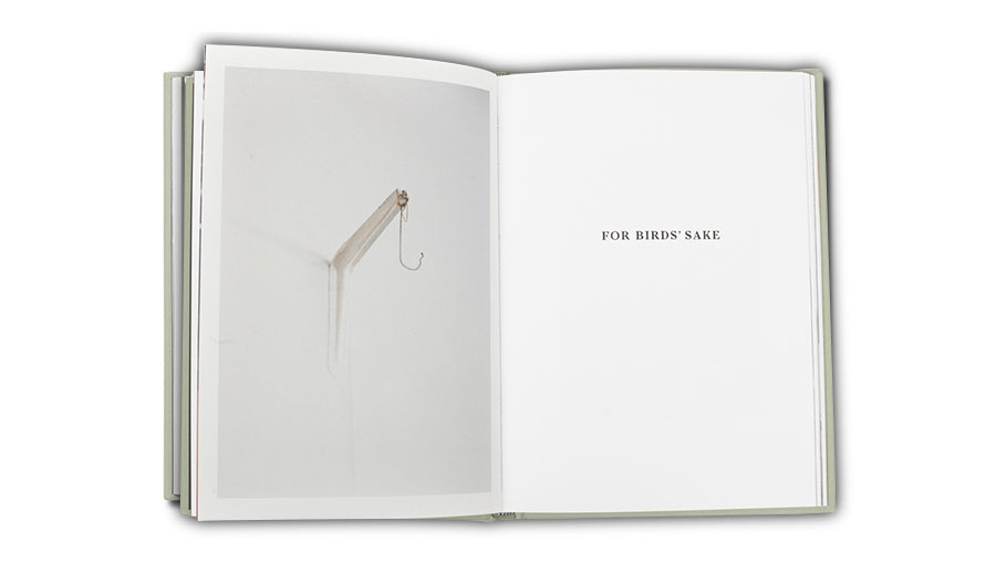 For Birds' Sake © Cemre Yeşil & Maria Sturm, Published By La Fábrica Madrid