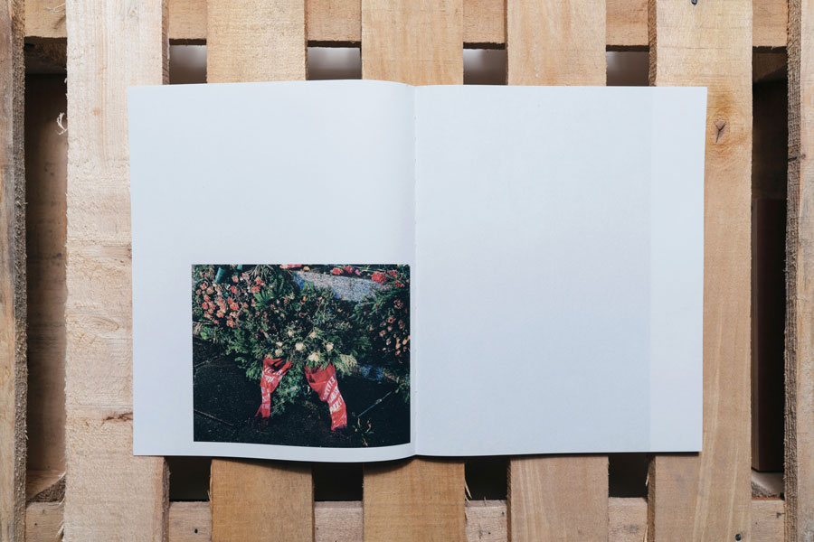 "Arnis Balcus ""Victory Park"", Published By Brave Books, Berlin"