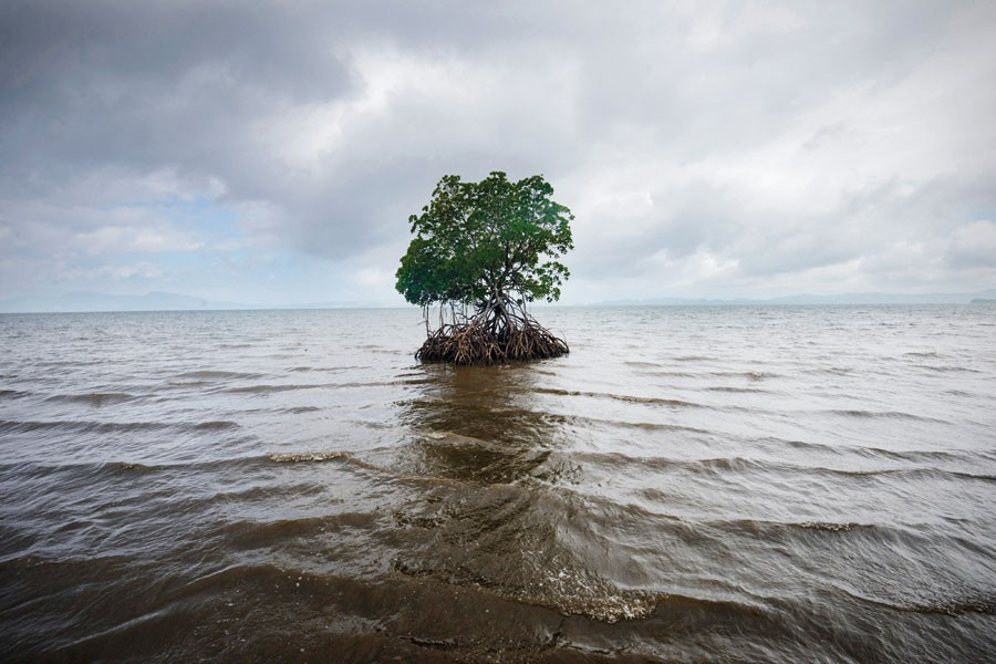 © Kadir Van Lohuizen/NOOR, From The Series Sea-level Rise In Fiji.