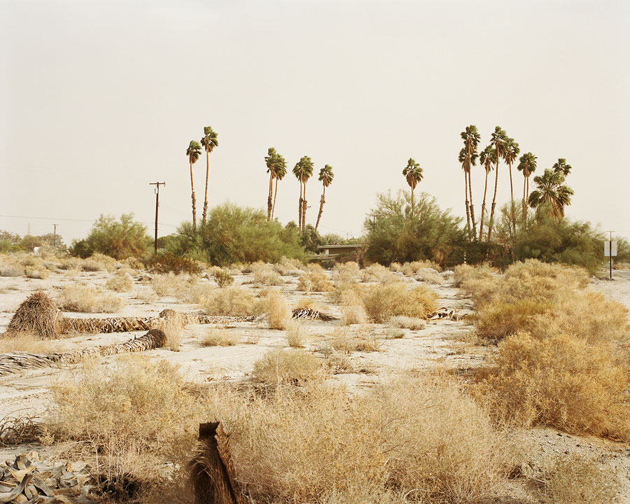 © Ron Jude, Dust Storm W/Palms And House, 2013, From The Series 'Lago'