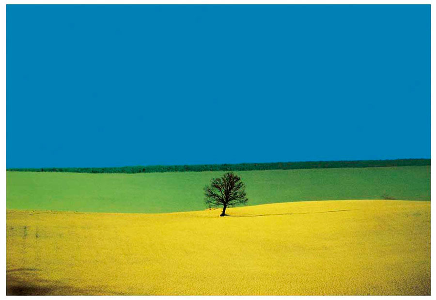 Landscape, Puglia, 1987 © Franco Fontana, Courtesy SR Contemporary Art Berlin